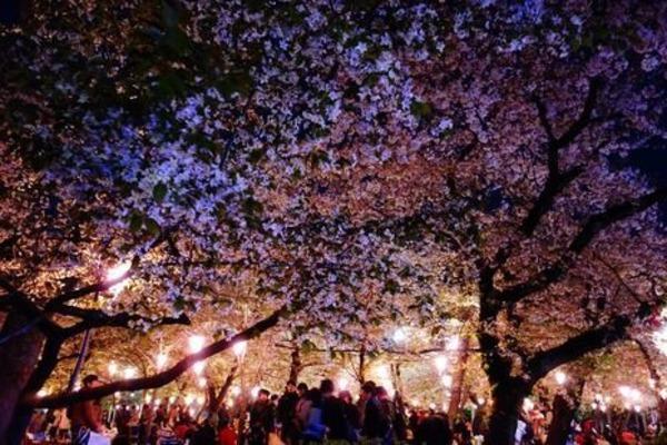 【無音で踊る】サイレントフェスプロジェクトがスタート!